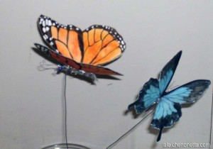 The first two butterflies