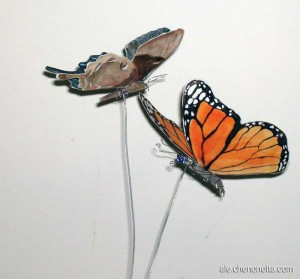 Showing off the undersides of the butterflies